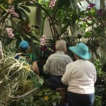 Norma and Madelein admiring the orchids and butterflies which often land on you!