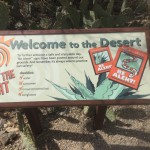 Welcome to the Desert Museum!