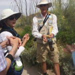Steven sharing jojoba oil with us next to the jojoba tree.