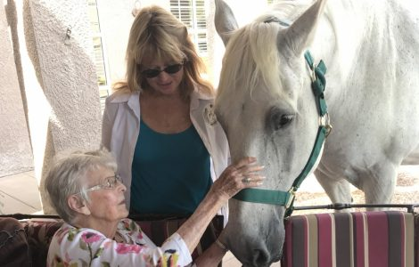 Horse Therapy Visit