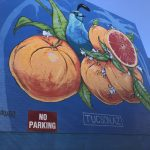 This is a 50-foot wide by 50-foot high mural was painted by Phoenix-based artist Isaac Caruso in six days, which he says was the fastest he ever worked. Isaac Caruso actually slept in the air on the lift so that he could work as late as possible. It features a blue quail and ripe oranges, which makes him think of Tucson.